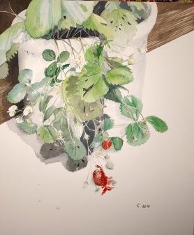 Fraisier aquarelle 30 x 40 cm