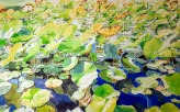 Nénuphars, aquarelle